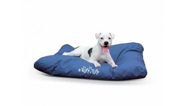 puppy on Ruff & Tuff dog bed