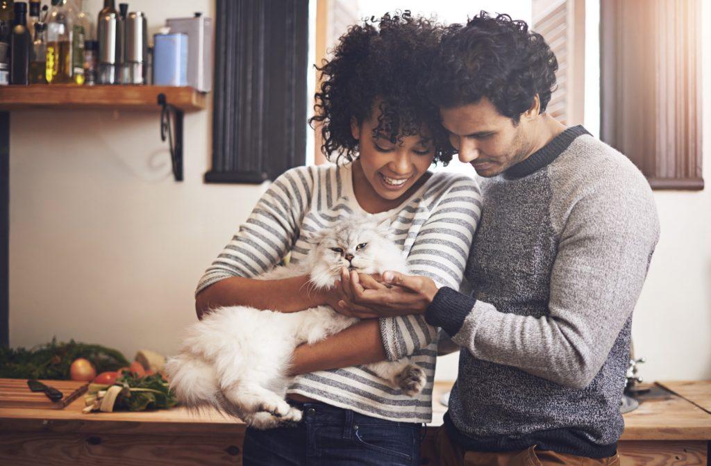 stylish couple holding a white fluffy cat