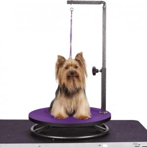 Master Equipment small-dog round table