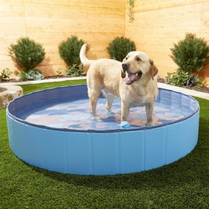 Frisco outdoor dog pool