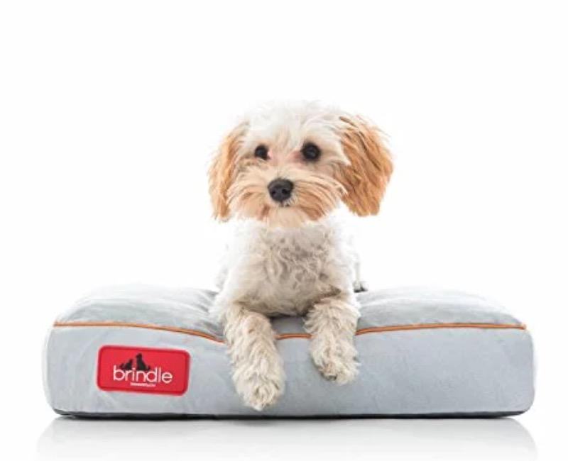 Brindle dog bed