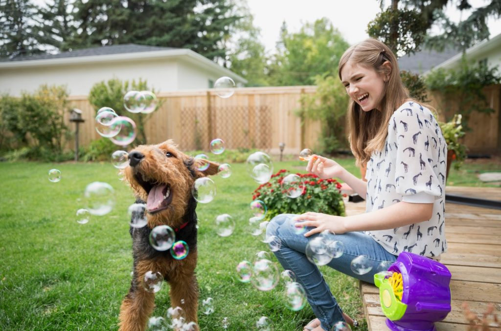 dog and girl playing with bubbles