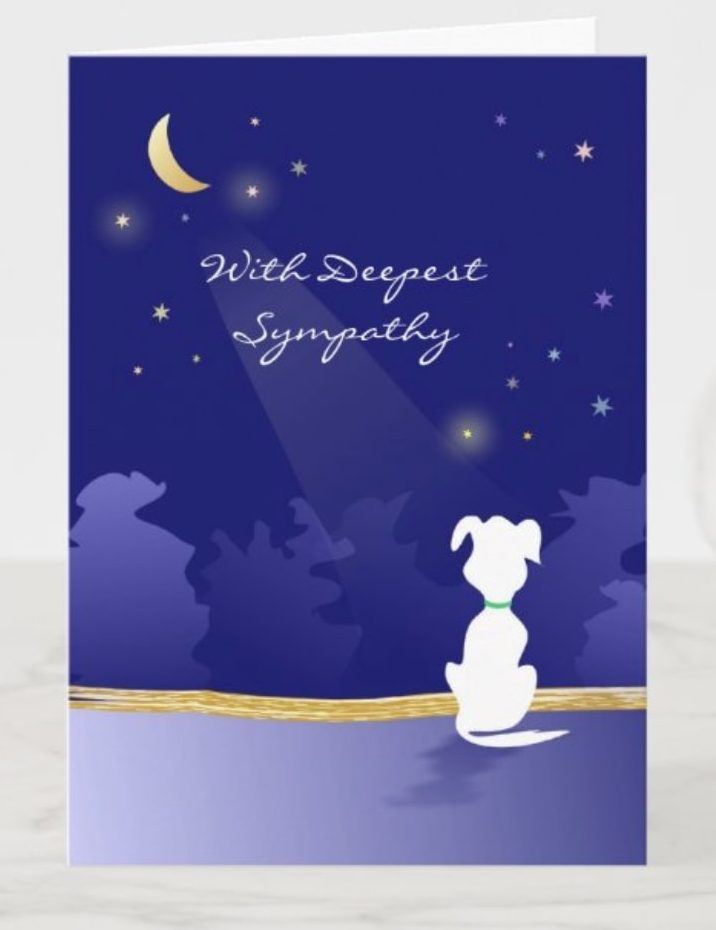 condolence card with dog looking at moon and stars