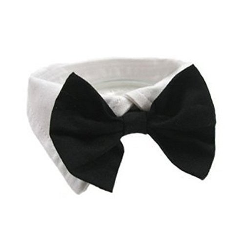 Eyesonme dog bow tie collar