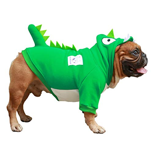 green dog dinosaur hoodie