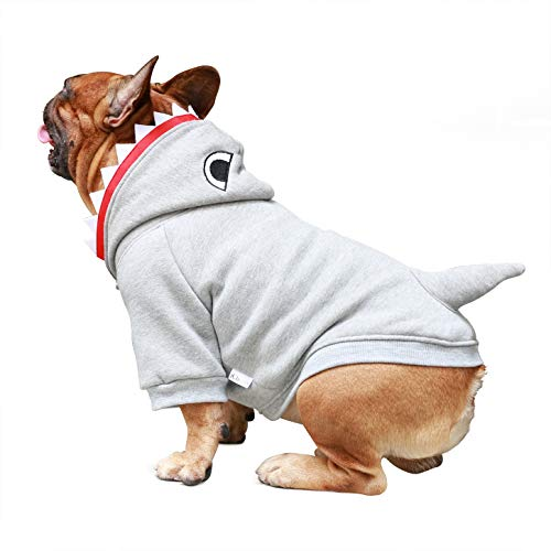 dog in cotton shark hoodie