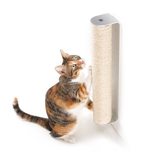 cat scratching wall-mounted sisal post