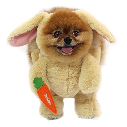 dog in bunny last minute costume