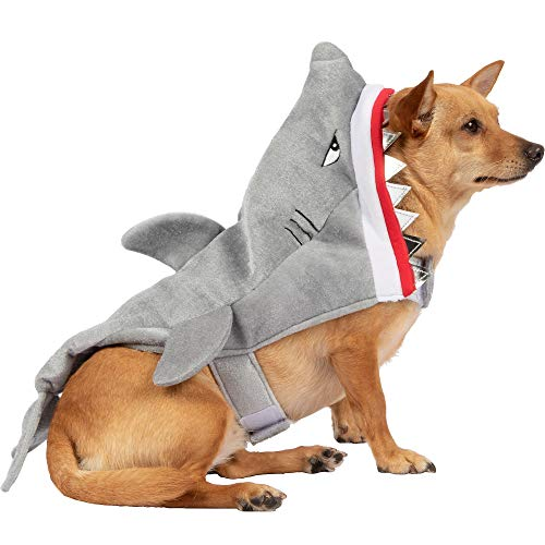 dog in Mission Pets shark costume