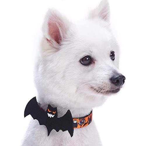 Blueberry Pet collar with bat