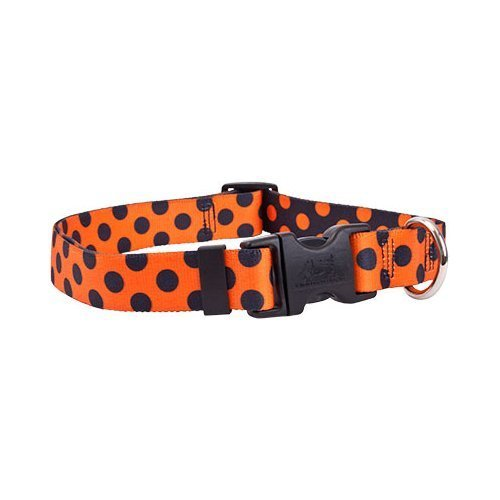 orange and black polka dot collar