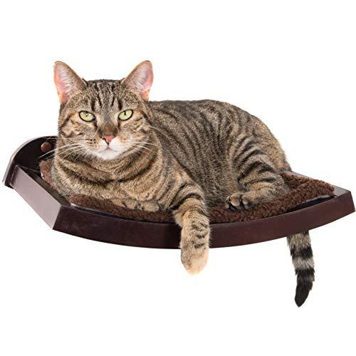 gray tabby on Art of Paws cat shelf