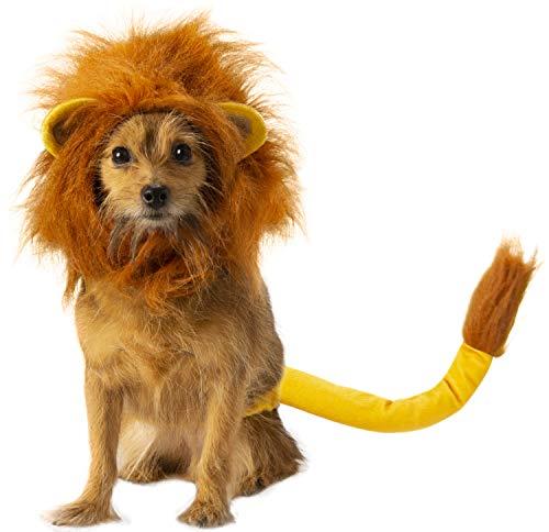 Simba dog costume