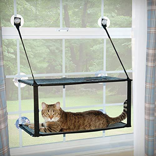 cat lying on lower deck of double-decker window platform