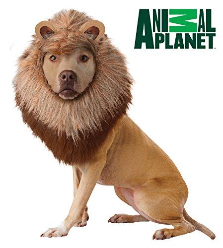 Animal Planet lion mane for pets