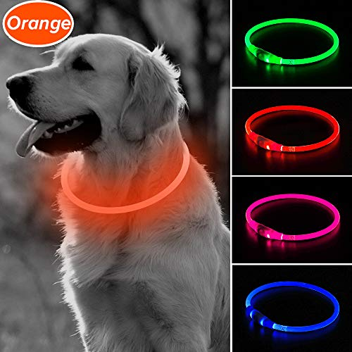 Been LED dog collar, multiple colors