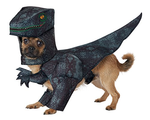 T Rex outfit
