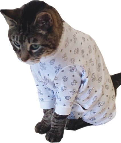 cat in recovery cat shirt