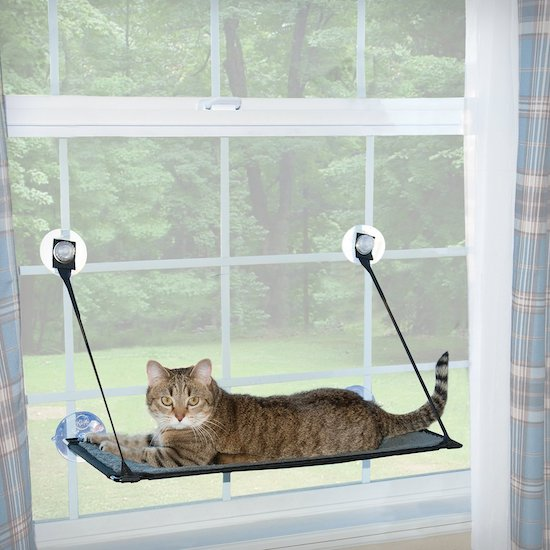 K & H Pet Products window-mounted cat perch