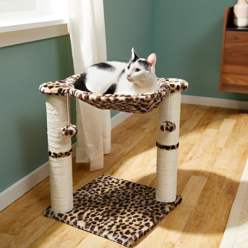 Frisco fur hammock and scratching posts