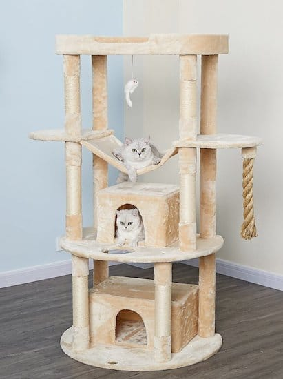 Go Pet Club tower