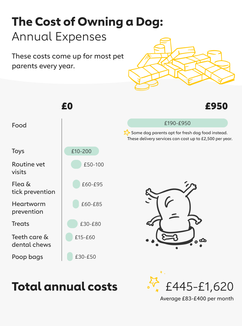 Annual Expenses Owning a Dog