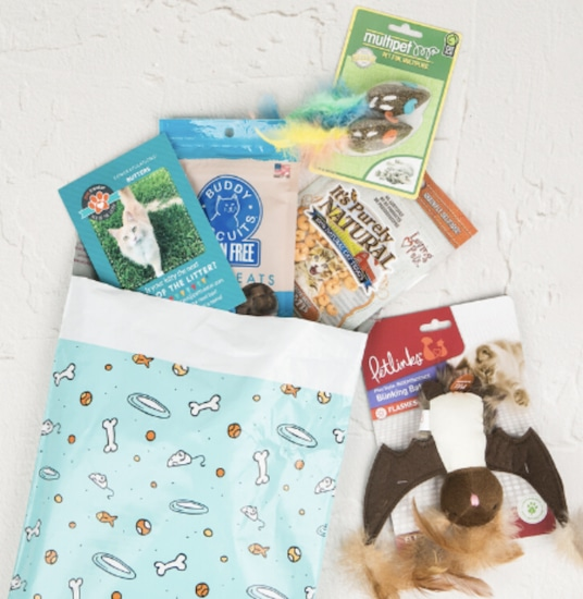 Pettreater cat subscription box