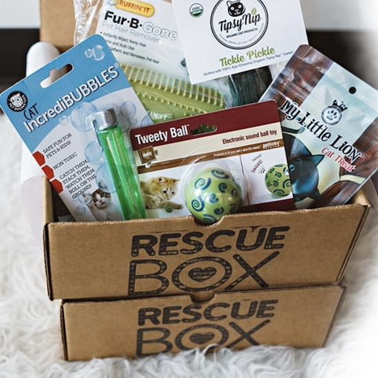 Rescuebox cat subscription box