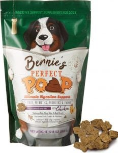Fiber Supplement for Dogs | Are Fiber
