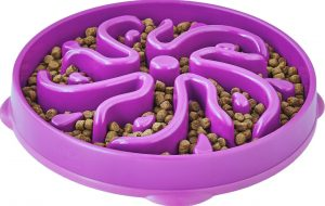 Outward Hound purple interactive dog dish