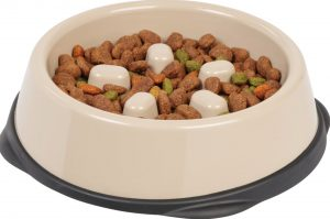 Iris beige pet food bowl
