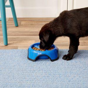 JW Pet Skid Stop dish