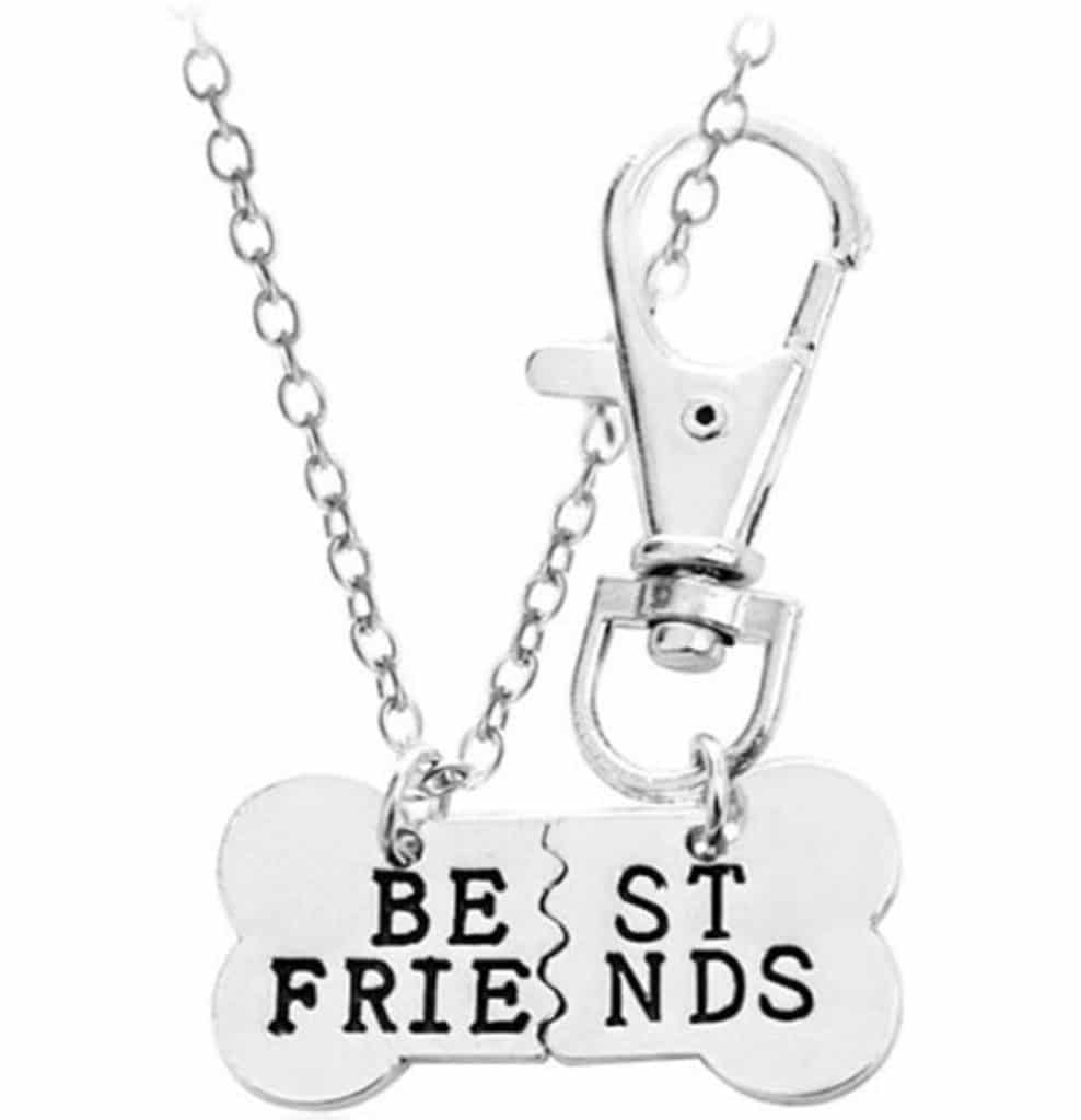 BFF Friendship Necklace and collar charm for dog moms