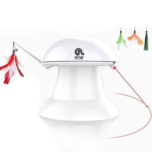 Petnf spinning laser and feather toy