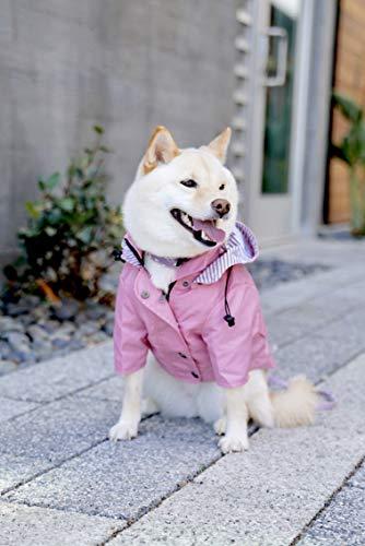 white dog wearing pink Ellie Dog Wear slicker