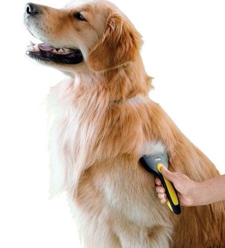 Oster Shedmonster dog brush for shedding