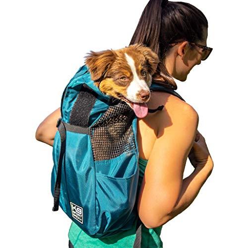 backpack on back holding dog inside