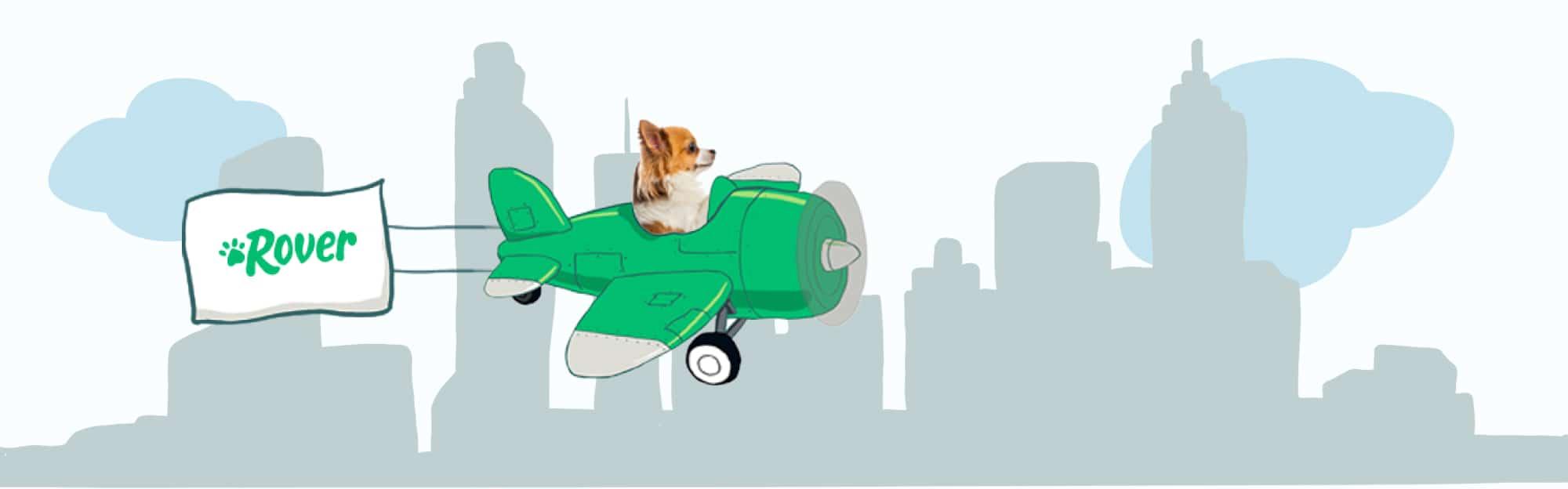 Atlanta's Skyline Pet Names