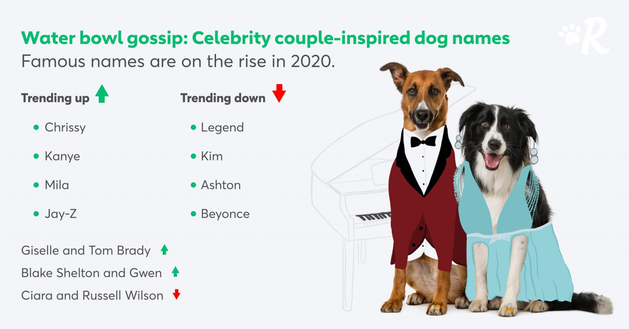 Graphic of the most popular celebrity couple inspired dog names