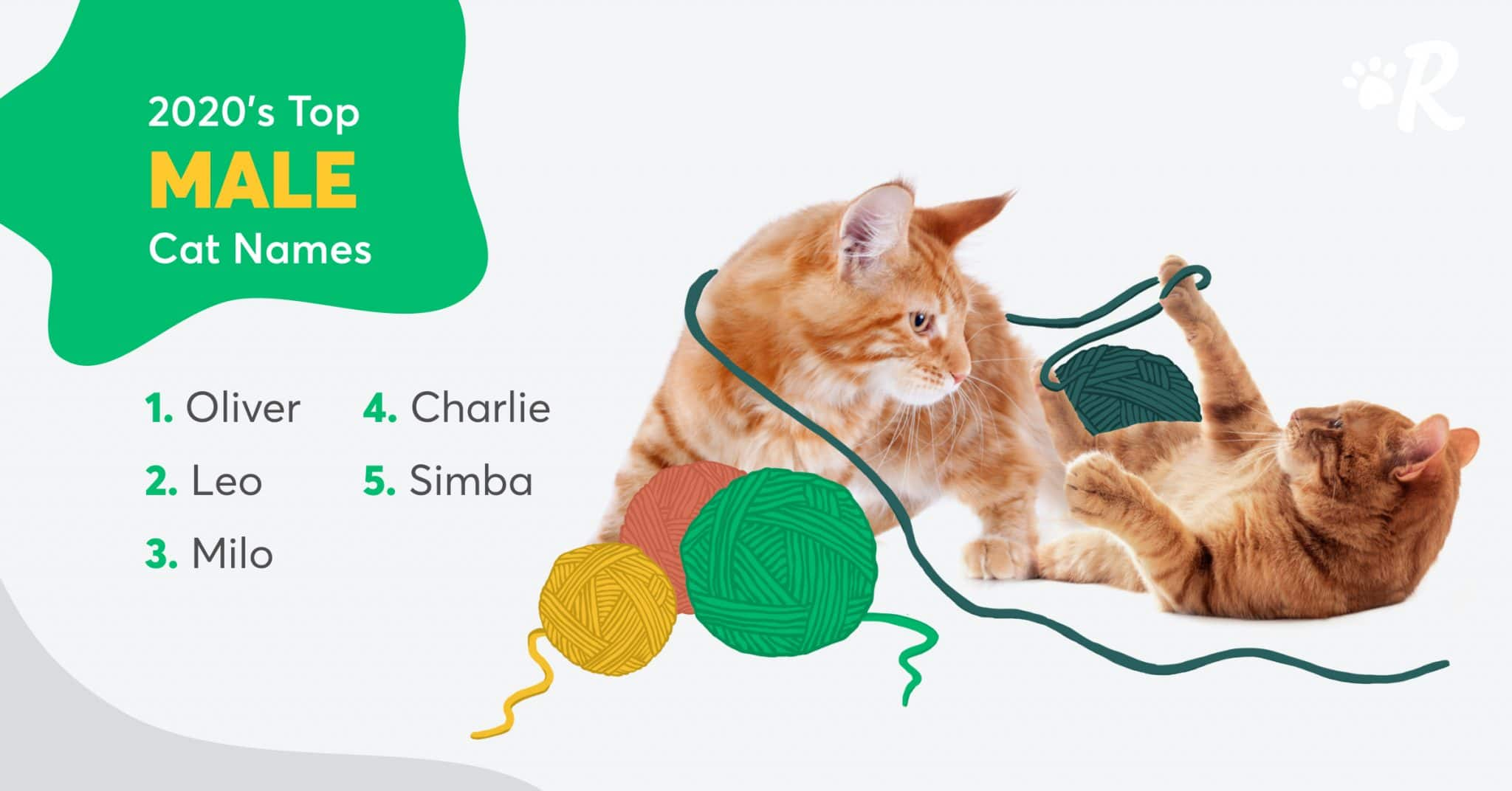 Graphic of top 5 most popular male cat names: Oliver, Leo, Milo, Charlie, Simba