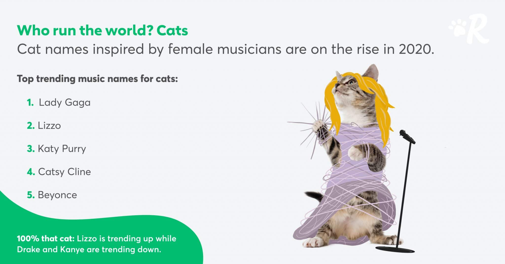 An infographic showing top music-inspired cat names of 2020