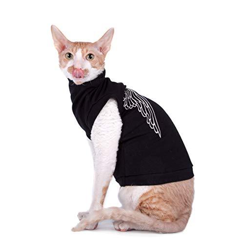 cat in black turtleneck
