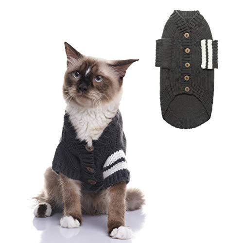 cat in gray cardigan