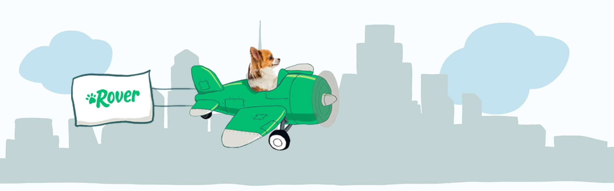 Philadelphia's Skyline Pet Names