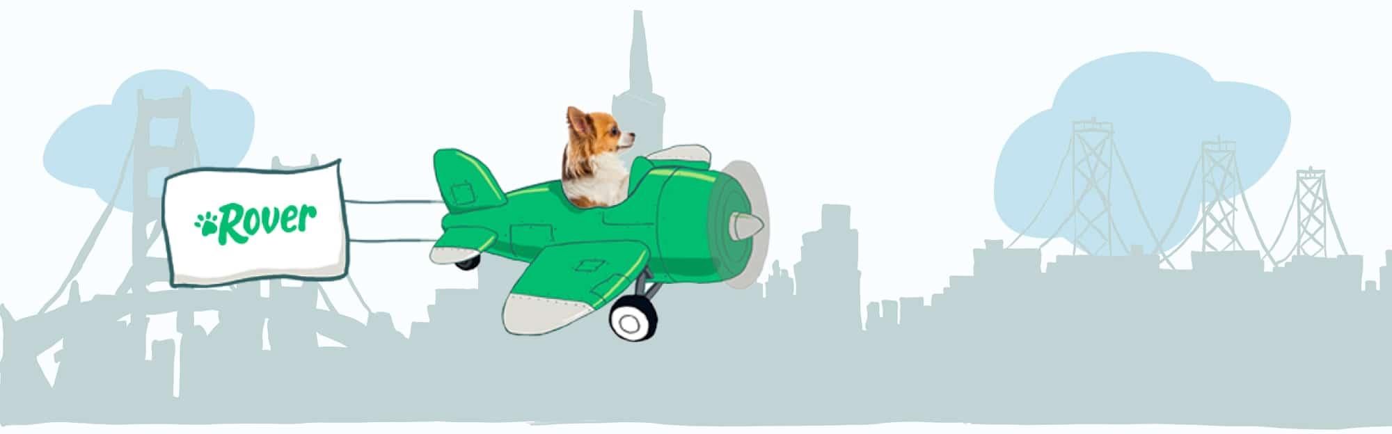 San Francisco's Skyline Pet Names