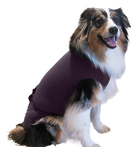 Surgi Snuggly dog diaper cover