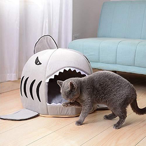 cueva con forma de tiburón