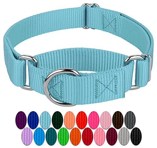 Country Brook Petz teal martingale for walk your dog month