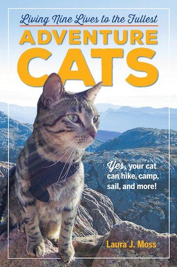 """Adventure Cats"""