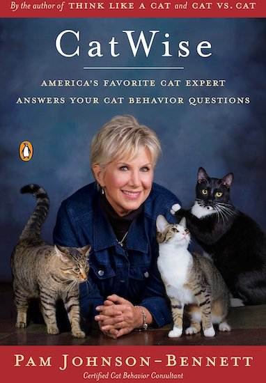 """""""Cat Wise"""" book cover"""